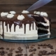 Cut a Piece of Chocolate Cake - VideoHive Item for Sale