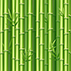 Realistic 3d Detailed Bamboo Shoots Background. Vector