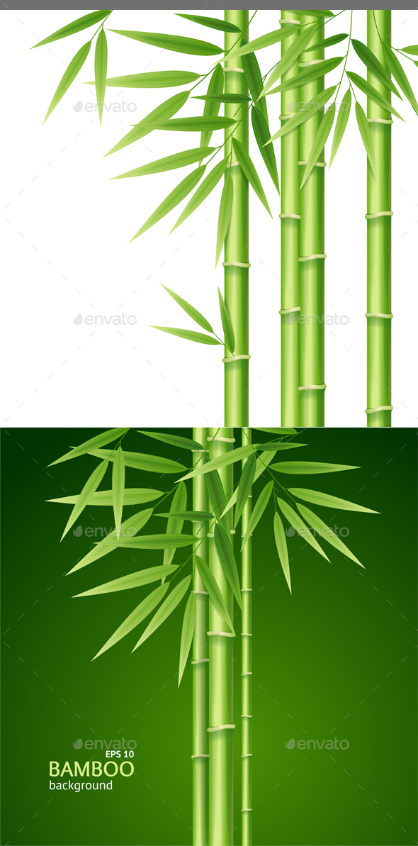 Realistic 3d Detailed Bamboo Shoots Background Card. Vector - Conceptual Vectors