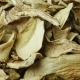 Dried White Mushrooms. Studio Video - VideoHive Item for Sale