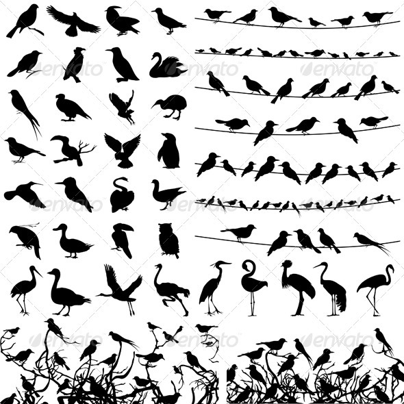 Silhouette of birds - Animals Characters
