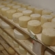 Cheese with Mold Ripening on Wooden Shelves - VideoHive Item for Sale