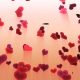 Flying Hearts peach background - VideoHive Item for Sale
