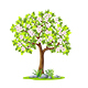 Tree in Spring - GraphicRiver Item for Sale