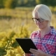 A Female Farmer Working with a Tablet in the Field Worth About the Vineyard - VideoHive Item for Sale