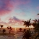 Tropical Palms and Ocean - VideoHive Item for Sale