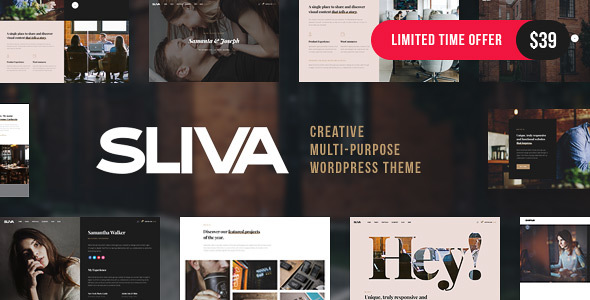 Sliva - Responsive Multi-Purpose Theme