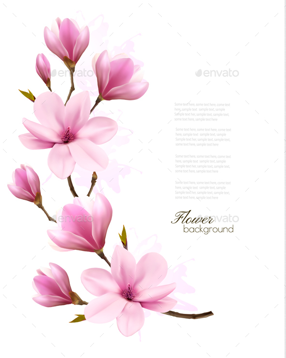 Nature Background With Blossom Branch of Pink Flowers - Flowers & Plants Nature