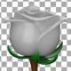 White Rose - VideoHive Item for Sale