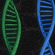 DNA - VideoHive Item for Sale