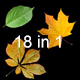 Falling Leaves Pack 18 in 1 - VideoHive Item for Sale