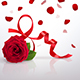 Greeting Card with International Women's Day and Red Rose - GraphicRiver Item for Sale