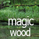 Magic Woods Vol.1 - VideoHive Item for Sale