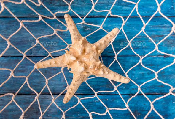Starfish in fishing net - Stock Photo - Images