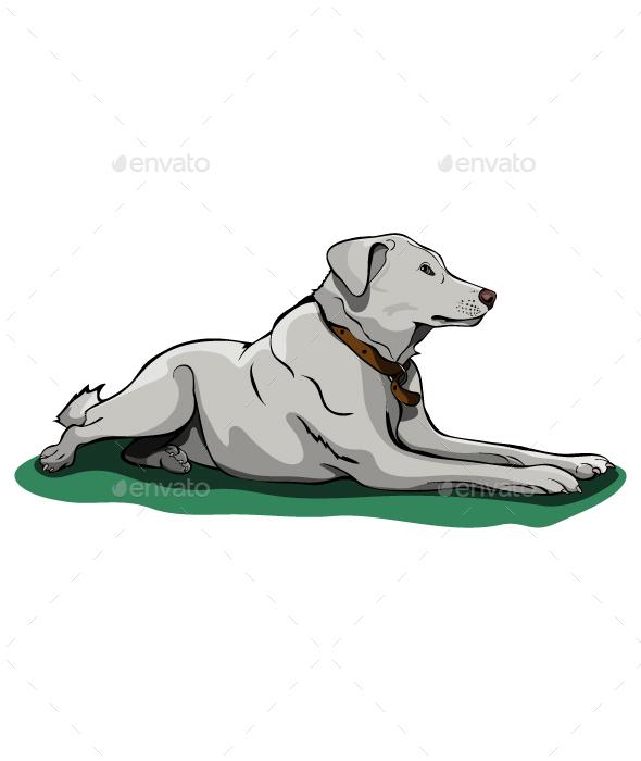 Sad Dog - Animals Characters