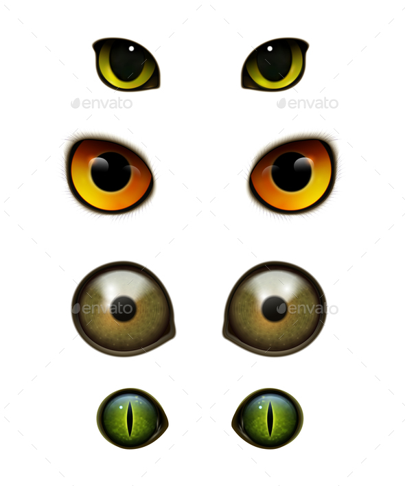 Monster Animals Cats Realistic Eyes - Animals Characters