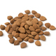 Heap of dried apricot stones - PhotoDune Item for Sale