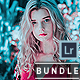 Premium Quality Lightroom Presets Bundle - GraphicRiver Item for Sale