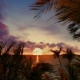Sunset in the Tropics - VideoHive Item for Sale