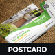 Postcard Design Template v2 - GraphicRiver Item for Sale