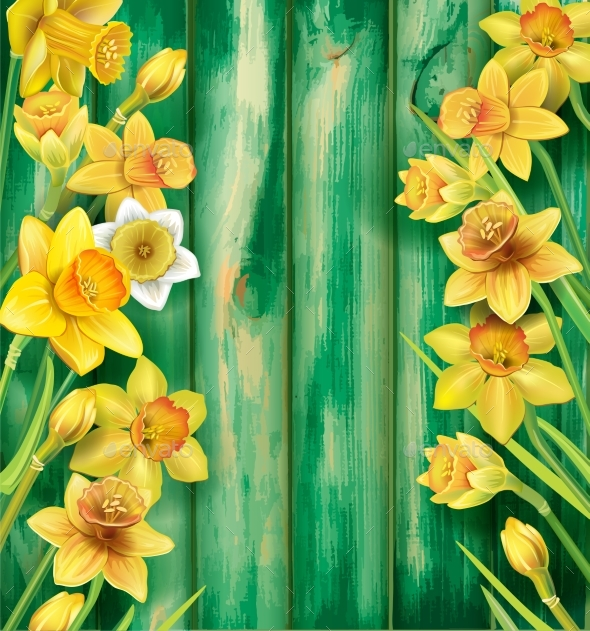 Daffodils Flowers on the Wooden Background - Flowers & Plants Nature