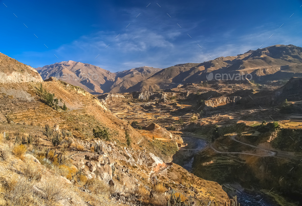 View of the deep Canyon Colca in Peru - Stock Photo - Images