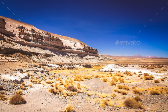 Landscape of the high peruvian plateau - Stock Photo - Images