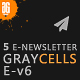 Graycells Newsletter V6 | 5  E-Shop Email Newsletter - ThemeForest Item for Sale