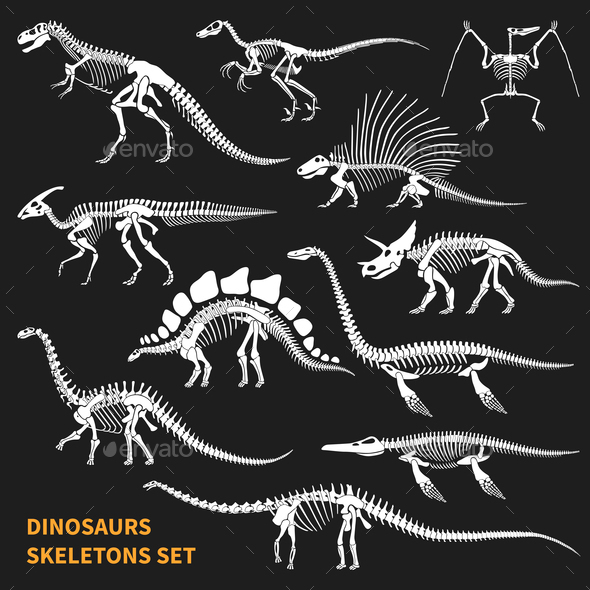 Dinosaurs Skeletons Chalkboard Icons Set - Miscellaneous Characters