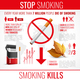 Tobacco Products Infographic Set