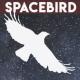 space_bird