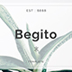 Begito Minimal Google Slide Template - GraphicRiver Item for Sale