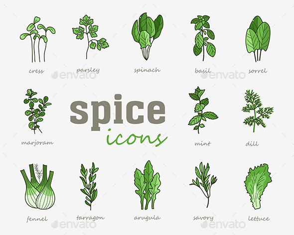 Greenery vector icon set. Vegetable green leaves - Food Objects