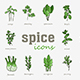 Greenery vector icon set. Vegetable green leaves - GraphicRiver Item for Sale