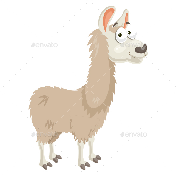 Llama Vector Illustration - Animals Characters