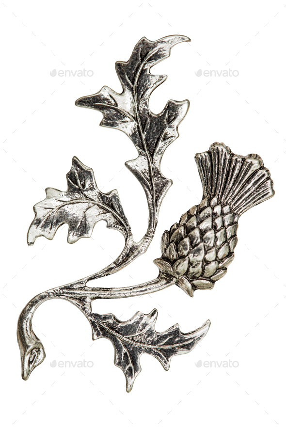 Filigree in the form of a thistle flower, decorative element for - Stock Photo - Images