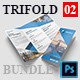 Corporate Brochure Bundle