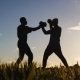 Boxing Workout with Trainer Outdoors Low Angle Shot of Opponents' Silhouettes in Boxing Gloves - VideoHive Item for Sale