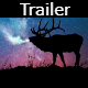 Hollywood Trailer