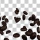 Coffee Beans Falling on Table - VideoHive Item for Sale