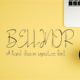 Bellinor A Hand Drawn Signature Font - GraphicRiver Item for Sale