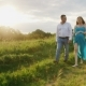 Steadicam Shot: Young Couple - Husband and Pregnant Wife Are Going Through the Countryside at Sunset - VideoHive Item for Sale