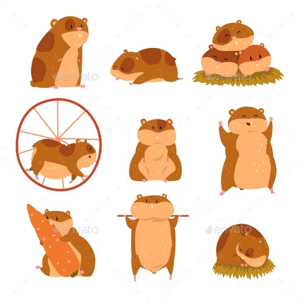 Cartoon Hamster Characters Set - Animals Characters