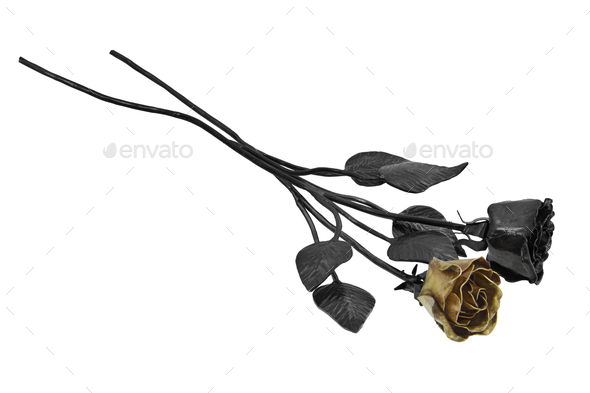 Forged roses on a white background - Stock Photo - Images