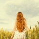 A Cute Young Girl Walks in a Field of Wheat - VideoHive Item for Sale
