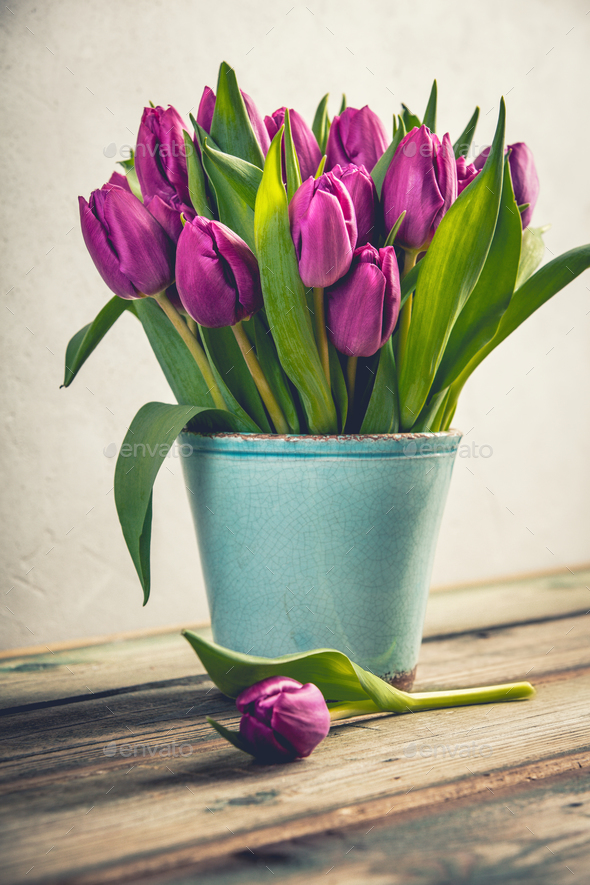 A bouquet of purple tulips in a vase - Stock Photo - Images