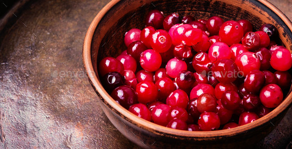 Berries of cranberries for tea - Stock Photo - Images