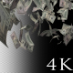 Falling Dollars Banknotes - VideoHive Item for Sale