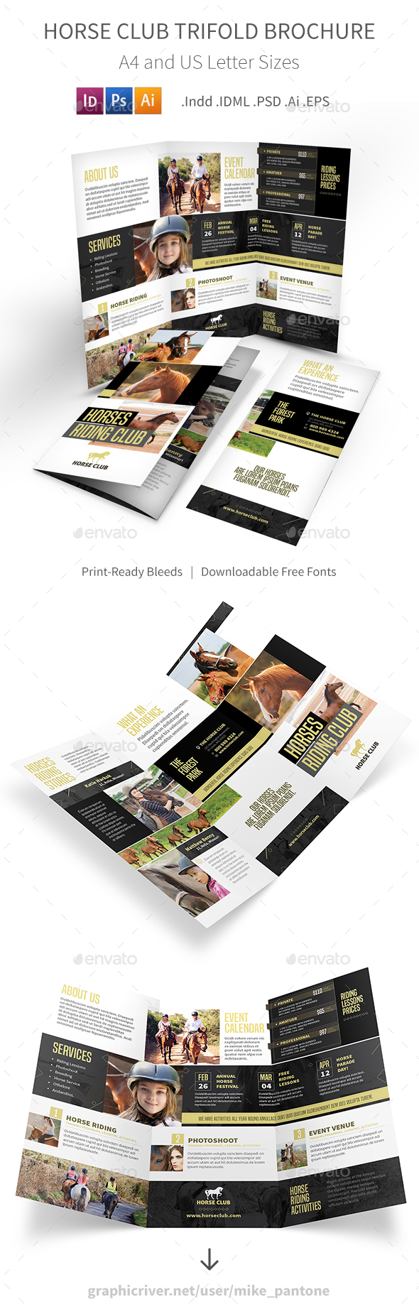 Horse Club Trifold Brochure - Informational Brochures