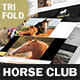 Horse Club Trifold Brochure - GraphicRiver Item for Sale